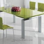 modern-mutfak-masalari-bir-yesil-renklede-pek-mumkun